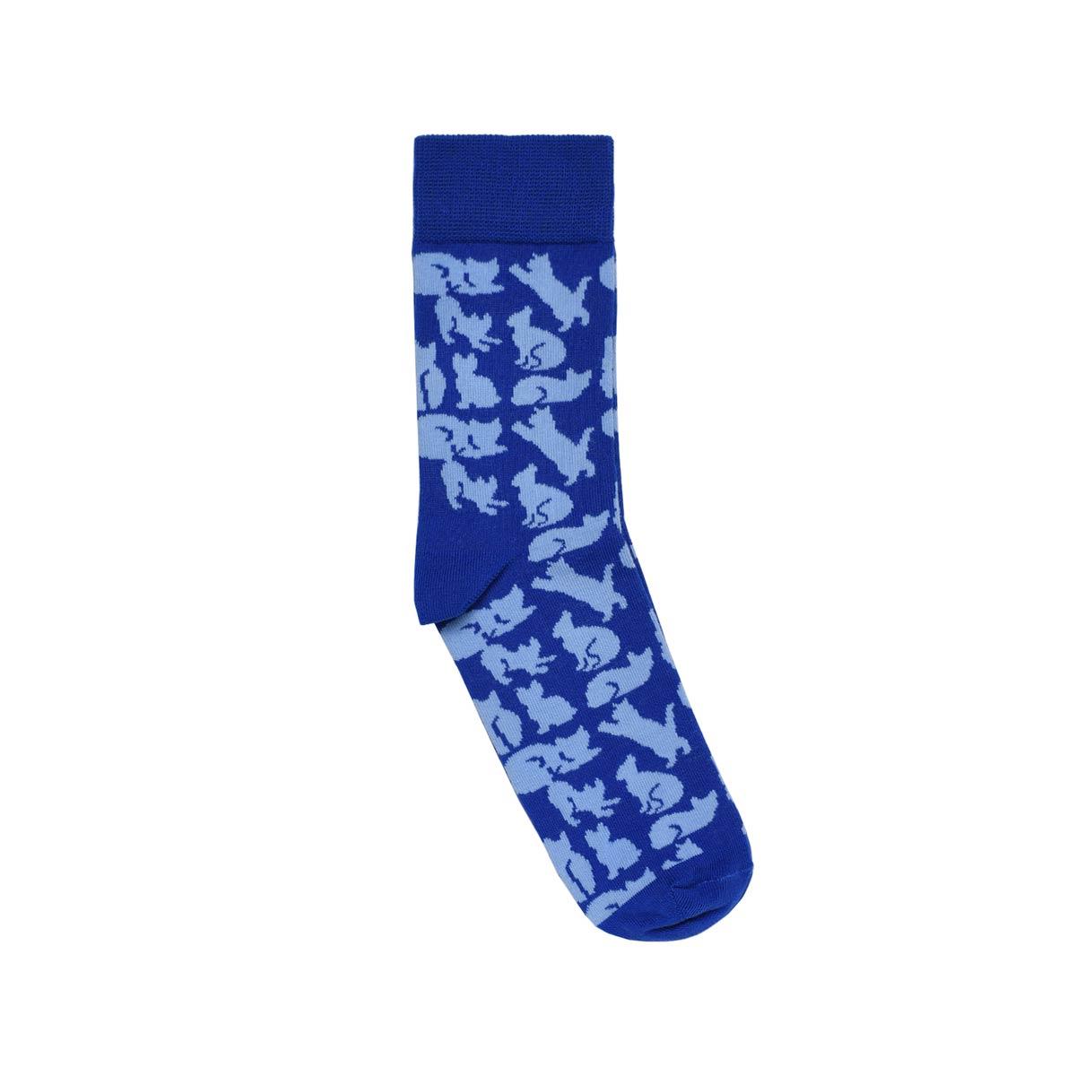 CH-00731-A12-chaussettes fantaisie-femme-chats-bleu-35-39