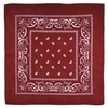 AT-00141-A10-foulard-bandana-rouge-bordeaux