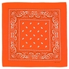 AT-00142-A10-foulard-bandana-orange
