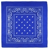 AT-00143-A10-foulard-bandana-bleu