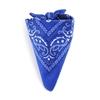 AT-00143-F10-foulard-bandana-bleu