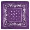AT-00147-A10-foulard-bandana-violet