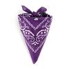 AT-00147-F10-foulard-bandana-violet