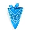 AT-01920-F10-foulard-bandana-bleu-cyan