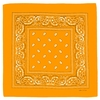AT-04057-A10-bandana-clementine