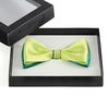 ND-00122-F10-noeud-papillon-bicolore-anis-vert-canard-boite-dandytouch