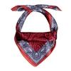 AT-06276-F12-carre-en-soie-femme-cachemire-rouge