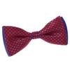_Noeud-papillon-damier-rouge-bleu