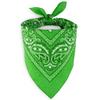 bandana-vert-pomme-AT-02911-F16