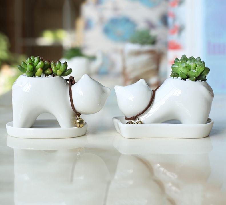 Lot de 2 petits pots + soucoupes Chat design