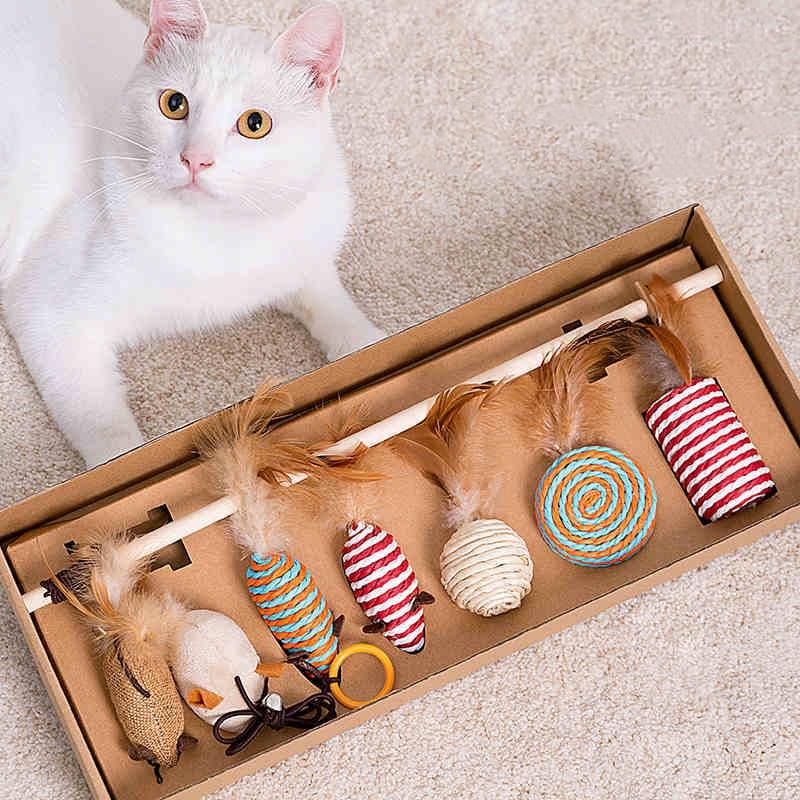Coffret de jouets éducatifs naturels pour Chat