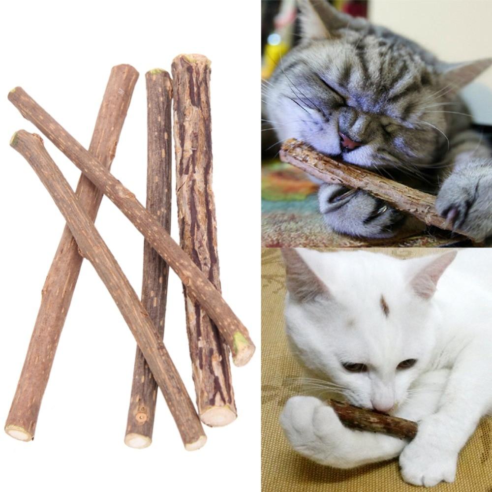 5-10-15-20-pi-ces-Pur-Naturel-Cataire-Pet-Jouet-Pour-Chat-Molaire-Dentifrice-Branche