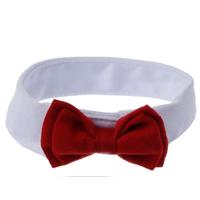 Pet-Chiot-Chaton-Chiens-Chat-R-glable-Bow-Tie-Collier-Cravate-De-Mariage-De-Vacances-D