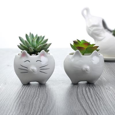 Vase petit pot Chat tout rond