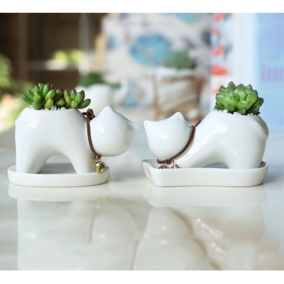 Lot de 2 petits pots + soucoupes Chat design