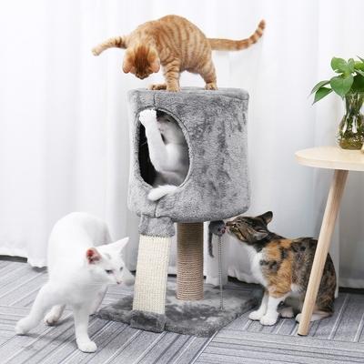 Arbre à Chat petit gris