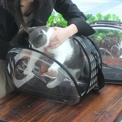 Sac de voyage Chat transparent