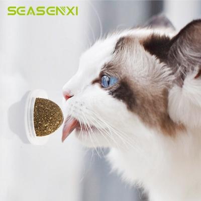 Bloc cataire pour votre Chat