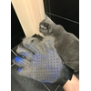 Gants de toilettage Chat tout propre