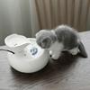 Fontaine automatique en céramique pour Chat