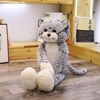 Peluche grand Chat (1)
