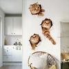 Sticker mural Chat 3D