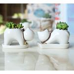 Lot-de-2-pi-ces-Chaton-en-forme-de-pot-de-fleurs-en-c-ramique-Mini