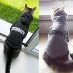 S-curit-habits-pour-chat-Pet-Chat-Manteaux-Veste-Hoodies-Pour-Chats-Outfit-Chaud-Pet-V