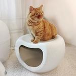 Animal-de-compagnie-maison-quatre-saisons-chat-maison-tanche-en-plastique-automne-hiver-chaud-chaise-SW