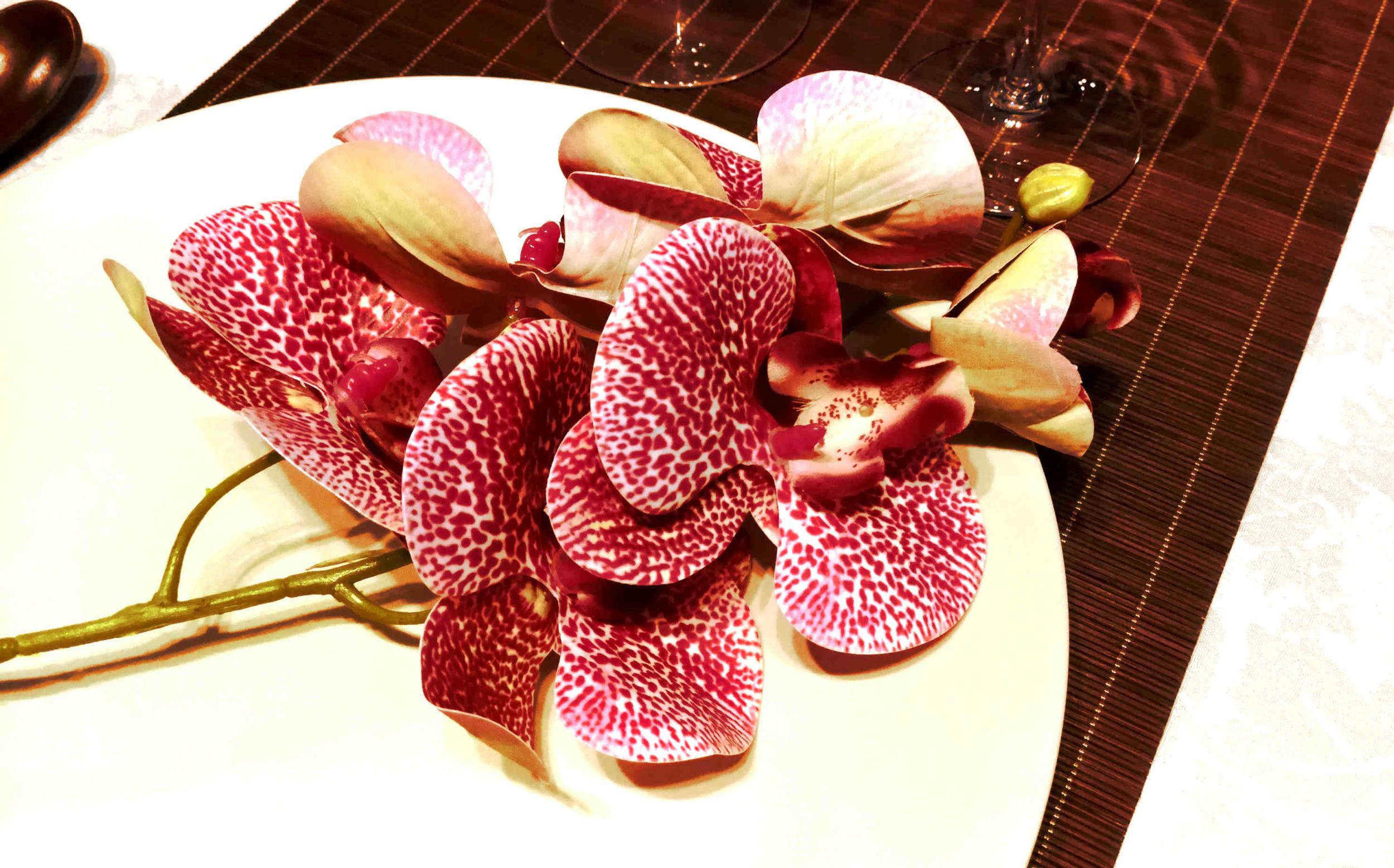 Décoration de table zen avec orchidée artificielle