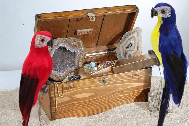 decoration de table perroquet pour centre de table anniversaire pirate