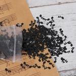confettis-de-table-note-de-musique-anniversaire