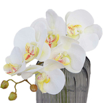 orchidee-artificielle-pour-decoration
