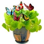 papillons-deco-sur-tige-pot-de-fleurs
