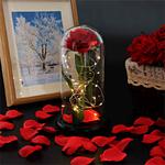 rose-eternelle-lumineuse-sous-cloche-belle-et-bete
