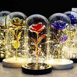 rose-eternelle-lumineuse-sous-cloche-cristal