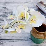 orchidee-artificielle-pour-decoration-pot