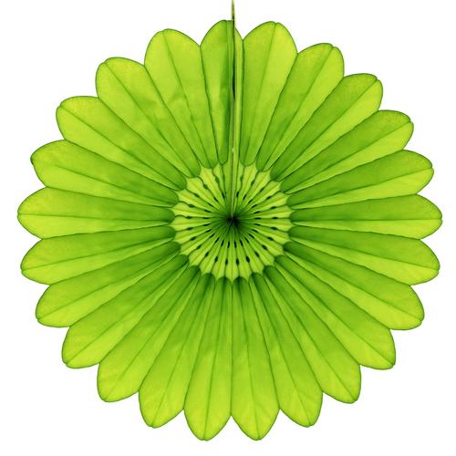 vert-anis