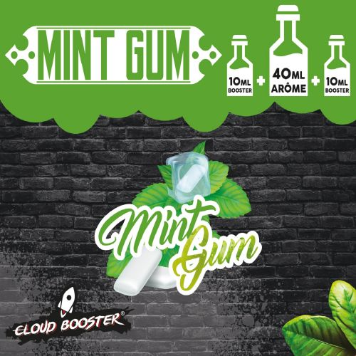 Mint Gum 60ml Cloud Booster