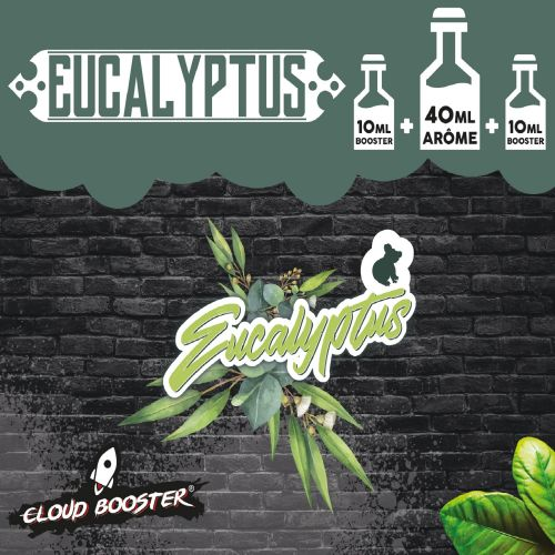 Eucalyptus 60ml Cloud Booster