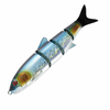 roll-swimmer-A06