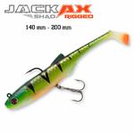 Vignette-Jackax-Shad-rigged-140-200_2020