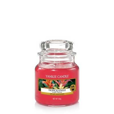 Bougie Tropical Jungle (Jungle Tropicale) petite jarre - Yankee Candle