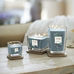 Bougie Mûres Sauvages grande jarre (gamme Elevation) - Yankee Candle 2