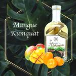 Rhum Mangue Kumquat  ,L'arrangé des Alchimistes,lalsace-en-bouteille