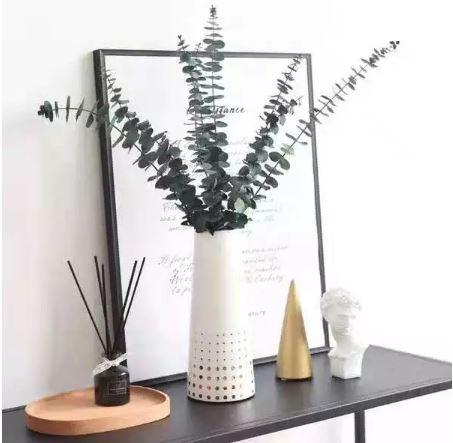 Branches d\'eucalyptus séchées (10 pièces)