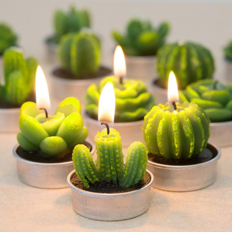 Lot de 12 Bougies cactus