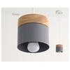 Lampe-pendante-nordique-cr-ative-de-Restaurant-lampe-de-salle-manger-de-couleur-lampe-pendante-moderne