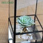 Nordique-Transparent-verre-Double-couche-hydroponique-succulente-plante-Vase-g-om-trie-plante-fleur-Inserter-d