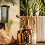 Arrosoir-nordique-Style-anglais-Vintage-en-laiton-plantes-succulentes-petit-bidon-de-pulv-risation-de-jardinage
